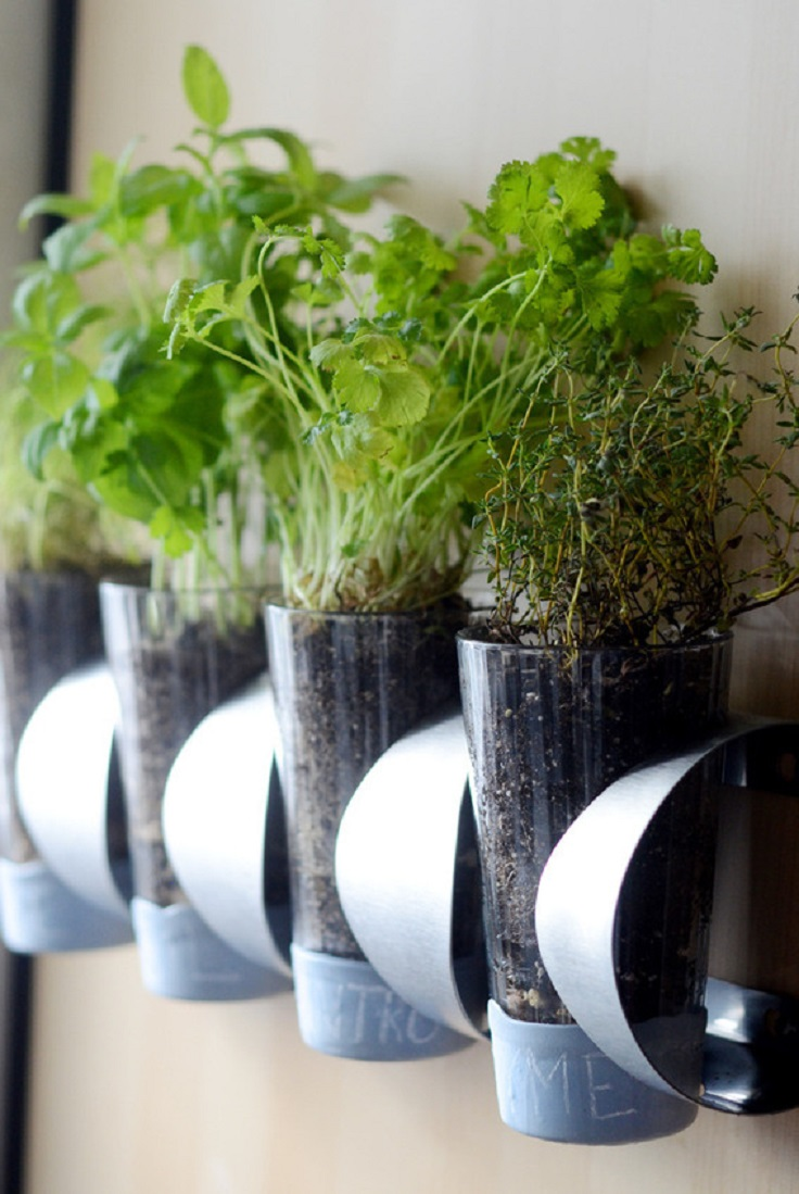 Make-a-Ridiculously-Cheap-Herb-Garden-Using-an-Ikea-Doo-Dad