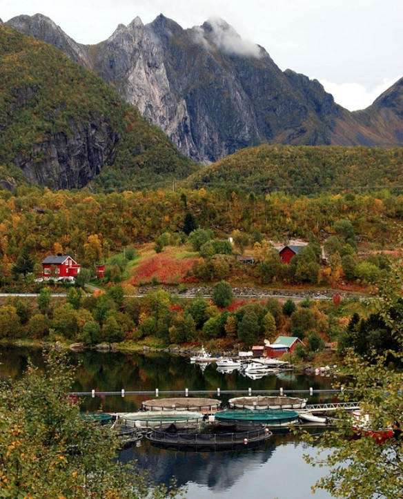 Travel Norway's Scandinavian Fishing Village