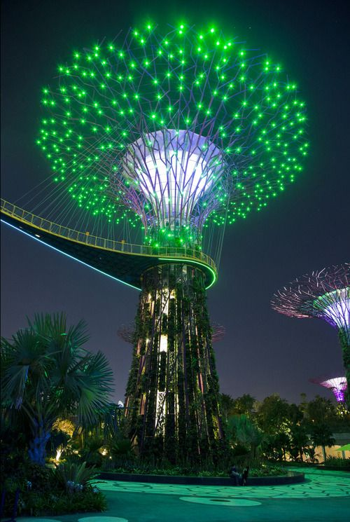 Gardens by the Bay, Marina Bay, Singapore