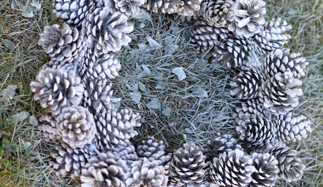 Pine Cone Wreath Tutorial