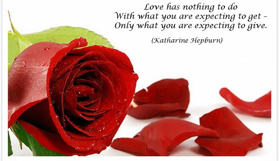 Red-Rose-picture-with-quotes-for-facebook-coverpage-9