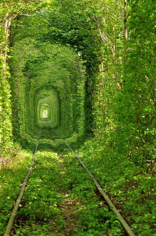 Tunnel of Love in Ukraine