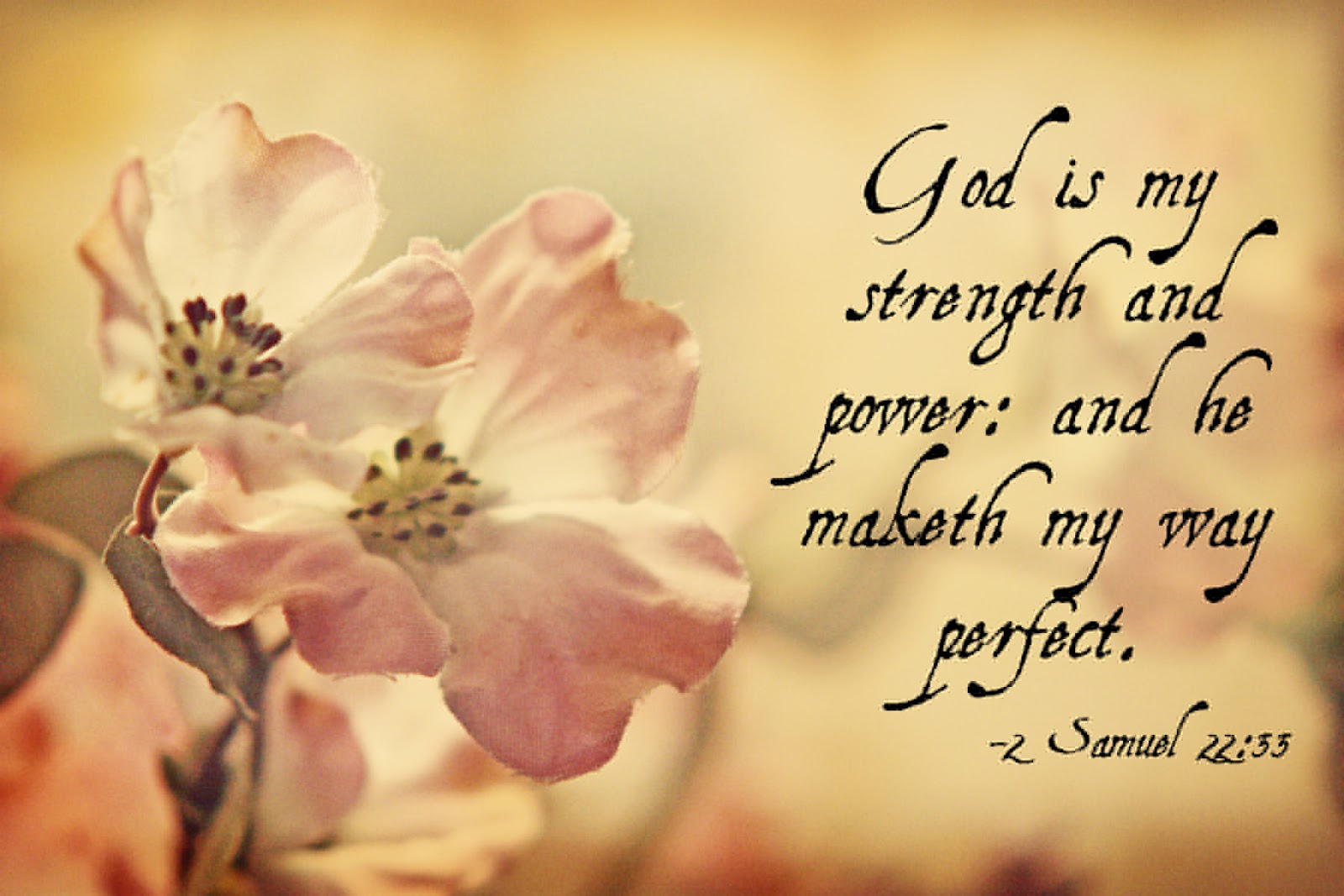 bible-quotes-on-strength-8