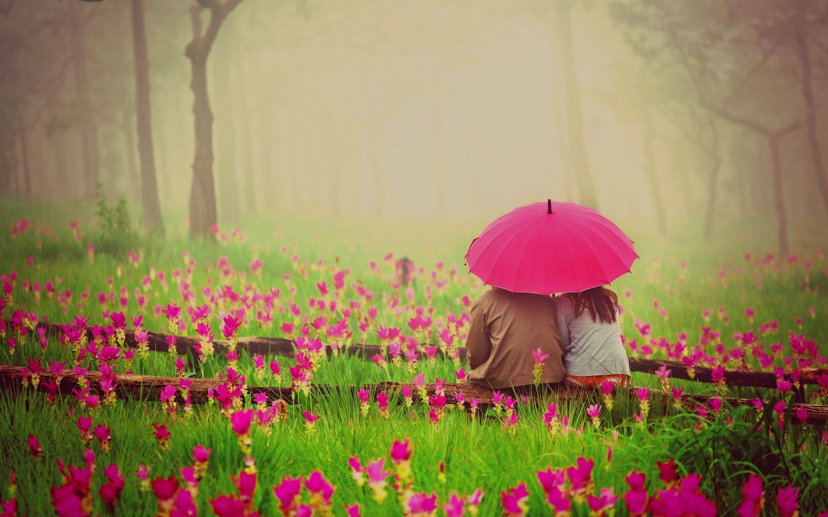 Cover Photos Of Love Couples : romantic-flowers-couple-with-umbrella-hd-desktop-wallpaper