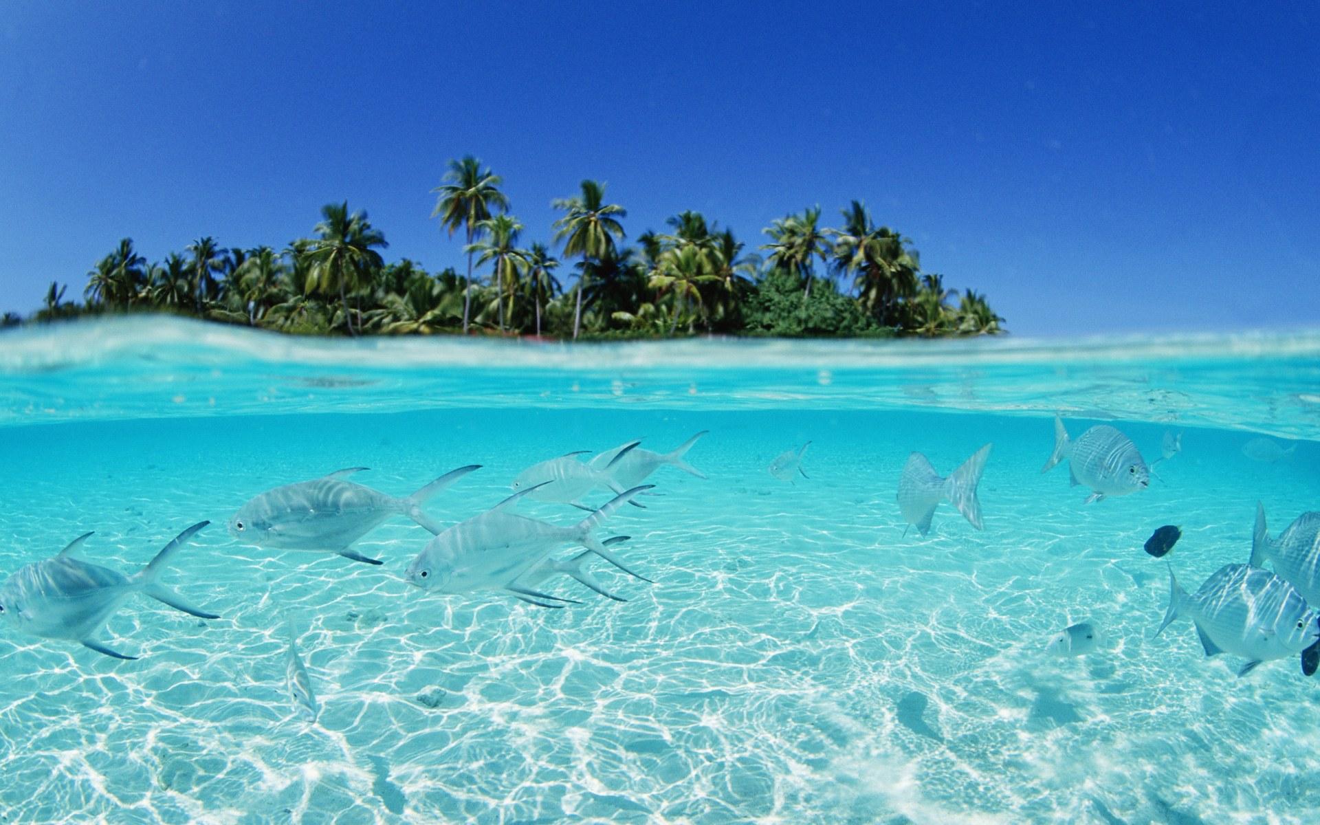 1beautiful beach
