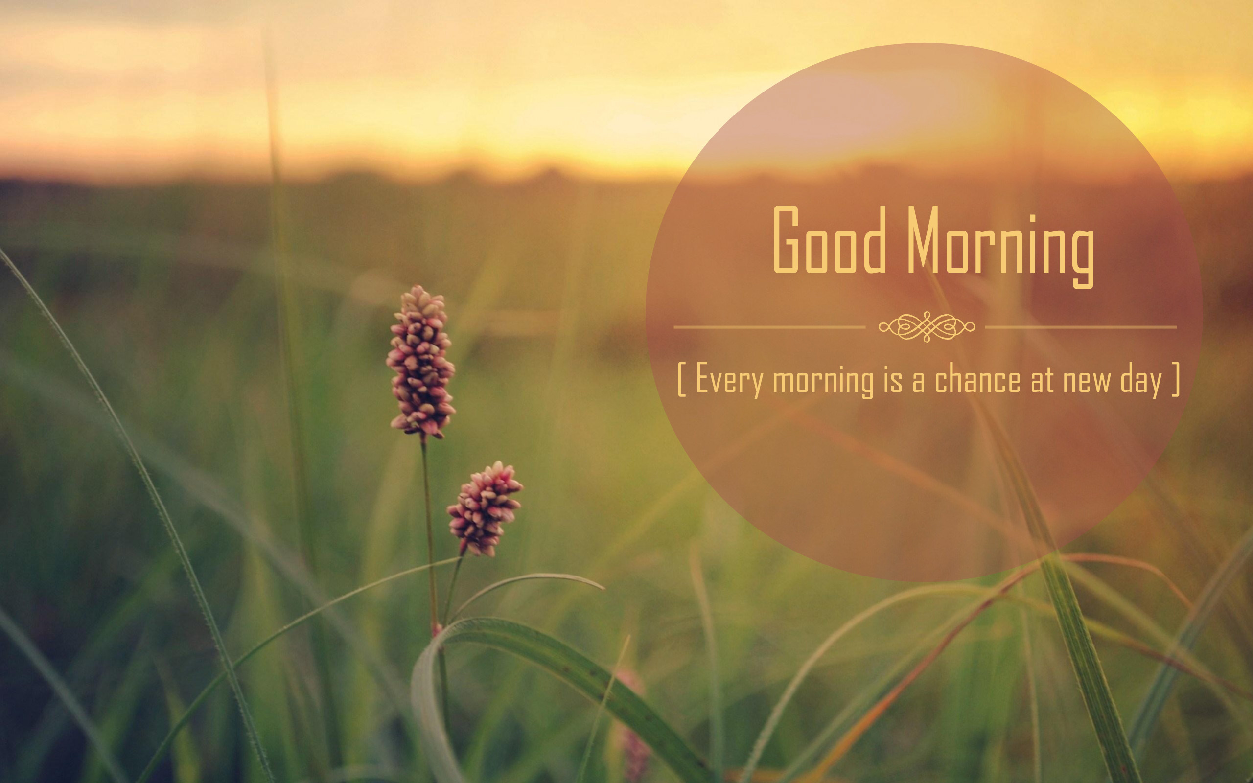 Good Morning Quotes New Day : Best good morning quotes