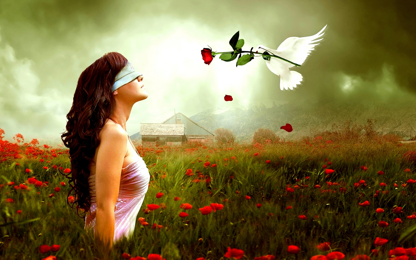 blind-love-top-hd-wallpapers-cool-background