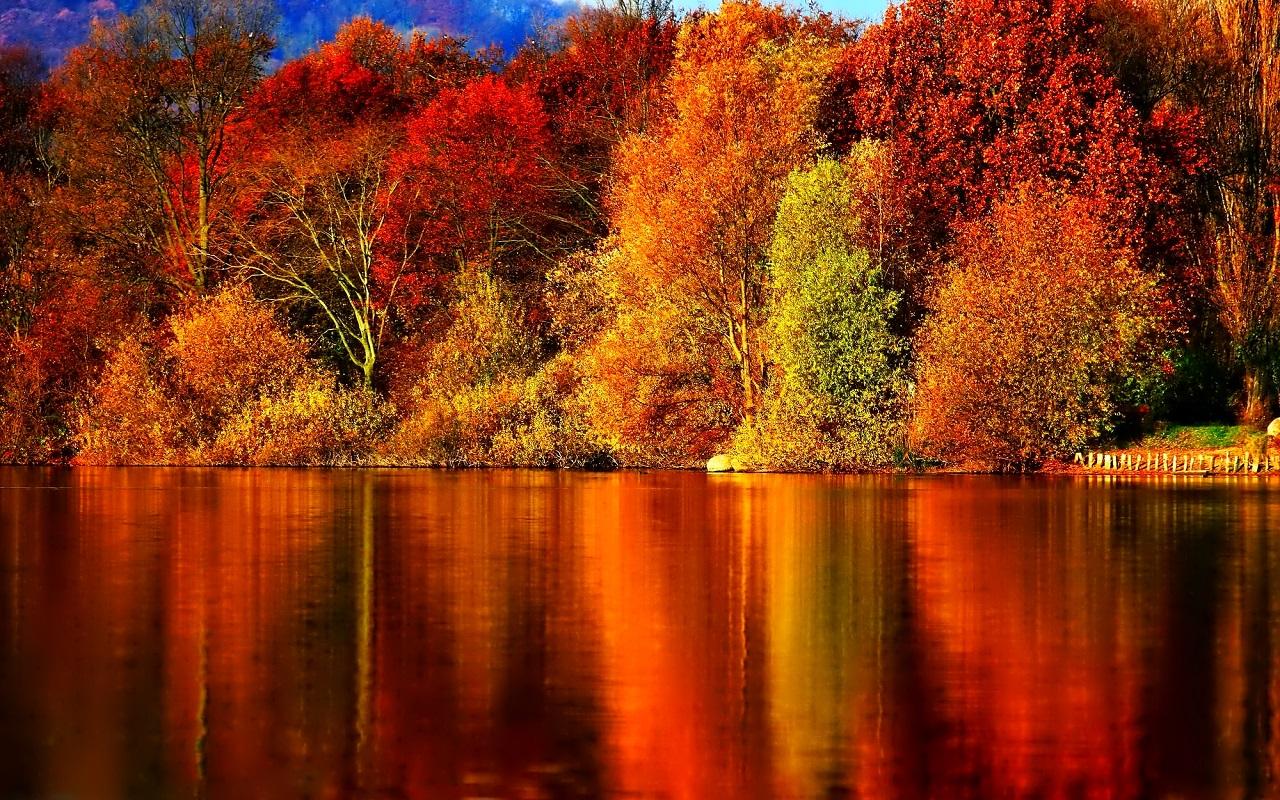 Autumn-Wallpaper-autumn