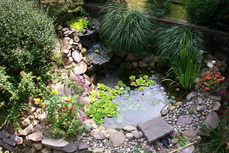 Amazing Backyard Pond Design Ideas - The WoW Style on Pond Ideas Backyard id=76025