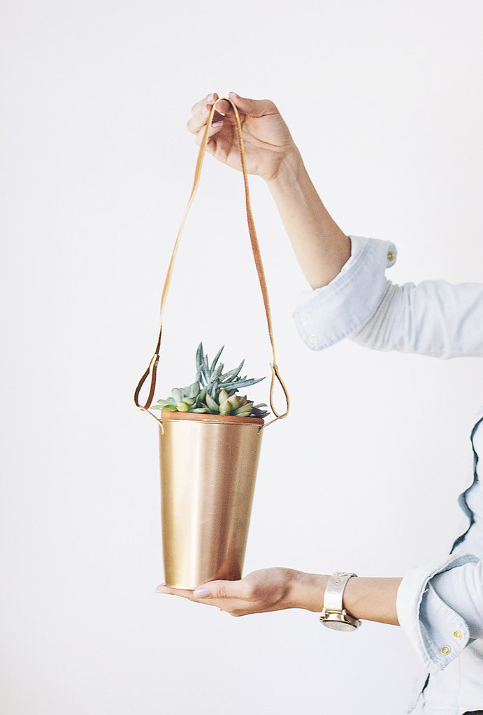 Copper Hanging Plants