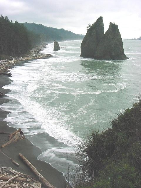 Mora and Rialto Beach 1