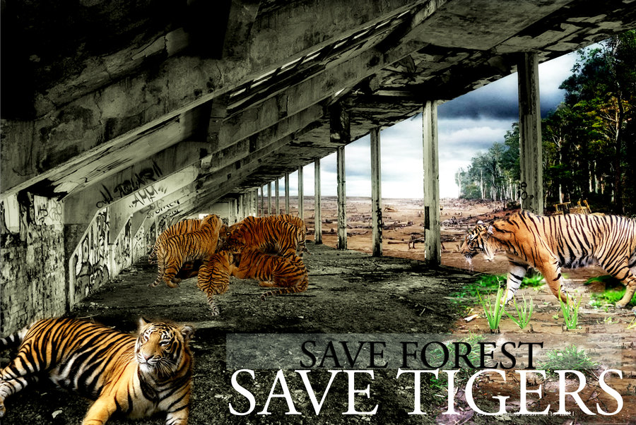 save_tiger_by_tilltheend-d4xwmqs