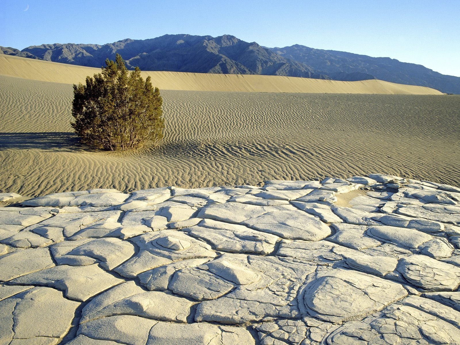 Death_Valley_National_Park_California