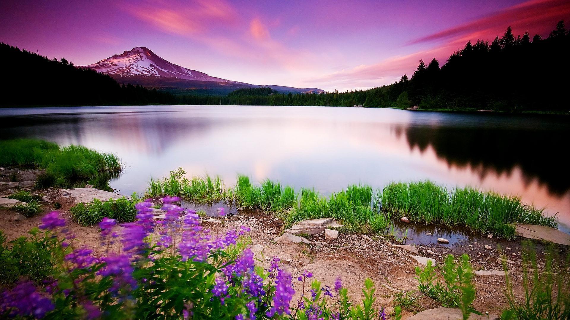 natural-landscape-purple-lake-wallpaper-