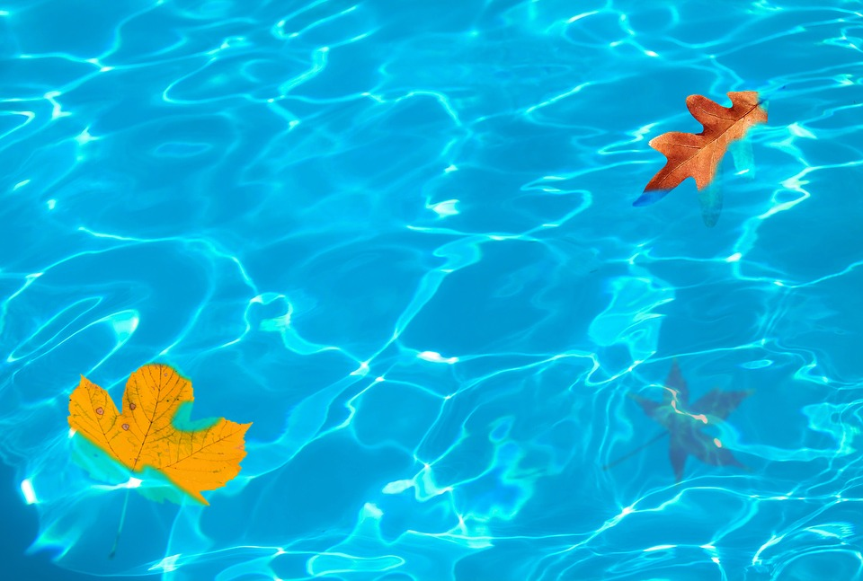 Learn 5 Easy Ways To Maintain Your Swimming Pool