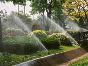 A Splash of Inspiration – How to Choose a Sprinkler System