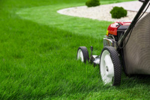 3 Reasons Why You Should Consider Hiring a Lawn Mowing Company
