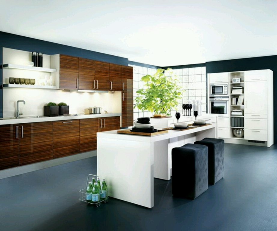 Elegant Kitchen Designs For Your New Home
