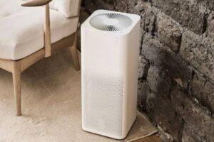Ten Reasons Why You Must Buy An Air Purifier
